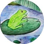 Visuel grenouille